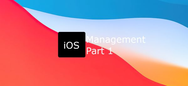 Managing iOS/iPadOS Part 1:  The basics